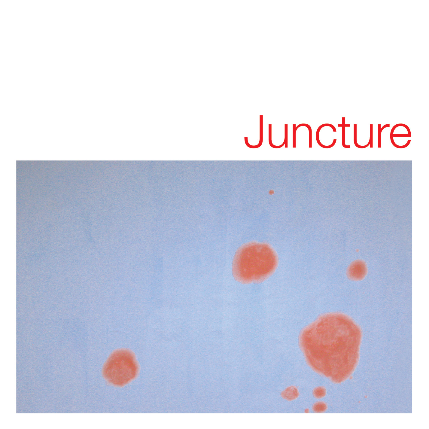 Jucture - Various Artists