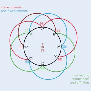 Harvesting Semblances and Affinities - Steve Coleman