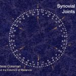 Synovial Joints - Steve Coleman
