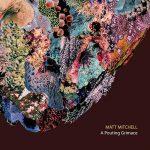 A Pouting Grimace - Matt Mitchell